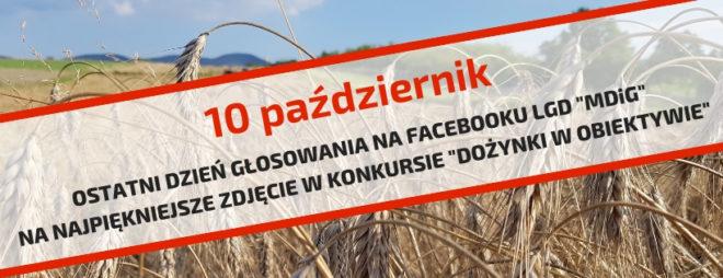 """10 październik- ostatni dzień głosowania na Facebooku LGD """"MDiG"""" na najpiękniejsze zdjęcie w konkursie """"Dożynki w obiektywie"""""""